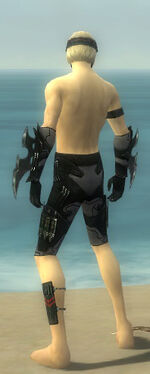 Assassin Kurzick Armor M gray arms legs back