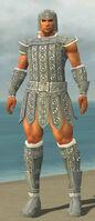 Warrior Ascalon Armor M gray front