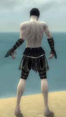 Necromancer Elite Cabal Armor M gray arms legs back