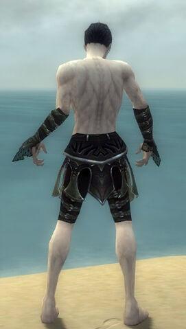 File:Necromancer Elite Cabal Armor M gray arms legs back.jpg