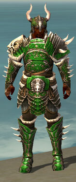 Warrior Norn Armor M dyed front