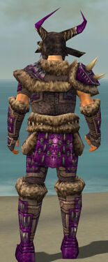 Warrior Charr Hide Armor M dyed back