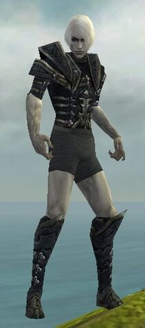 File:Necromancer Elite Cultist Armor M gray chest feet front.jpg