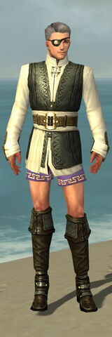 File:Mesmer Monument Armor M gray chest feet front.jpg