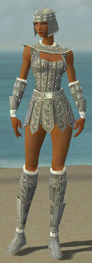 Warrior Ascalon Armor F gray front