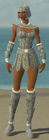 File:Warrior Ascalon Armor F gray front.jpg