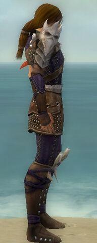 File:Ranger Studded Leather Armor M dyed side.jpg