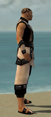 File:Monk Obsidian Armor M dyed side.jpg