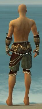 Ritualist Vabbian Armor M gray arms legs back