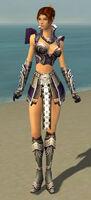 Elementalist Deldrimor Armor F gray front