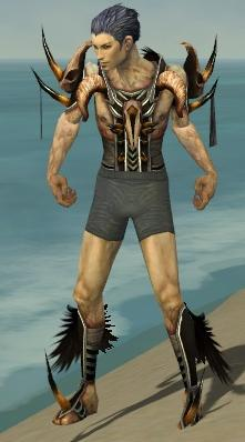 File:Necromancer Ancient Armor M gray chest feet front.jpg
