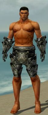 Warrior Obsidian Armor M gray arms legs front