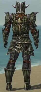 Warrior Wyvern Armor M gray back