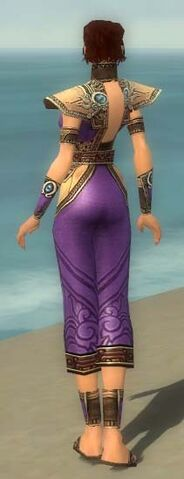 File:Monk Asuran Armor F dyed back.jpg