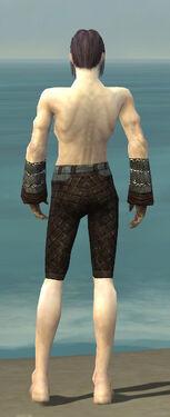 Elementalist Vabbian Armor M gray arms legs back
