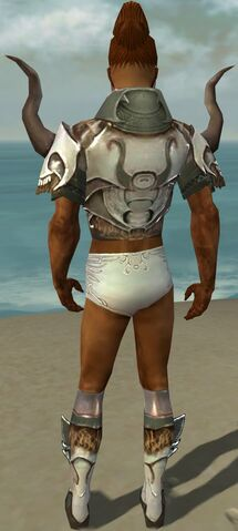 File:Paragon Norn Armor M gray chest feet back.jpg