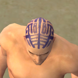 File:Monk Labyrinthine Armor M dyed head front.jpg