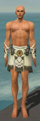 File:Paragon Sunspear Armor M gray arms legs front.jpg