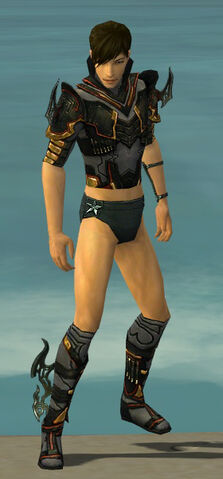 File:Assassin Elite Kurzick Armor M gray chest feet front.jpg