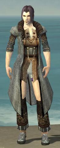 File:Elementalist Vabbian Armor M gray chest feet front.jpg