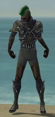 Necromancer Elite Necrotic Armor M gray chest feet front
