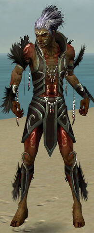 File:Necromancer Sunspear Armor M gray front.jpg