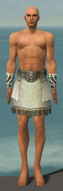 Paragon Istani Armor M gray arms legs front