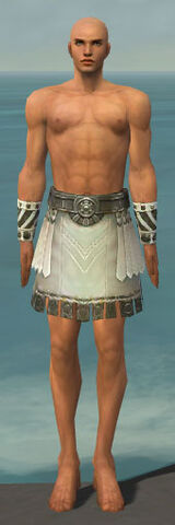 File:Paragon Istani Armor M gray arms legs front.jpg