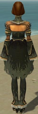 File:Mesmer Primeval Armor F gray back.jpg