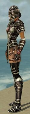 Warrior Ancient Armor F gray side