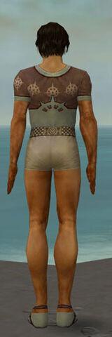 File:Dervish Sunspear Armor M gray chest feet back.jpg