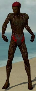 Necromancer Elite Scar Pattern Armor M dyed front