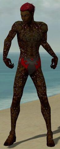 File:Necromancer Elite Scar Pattern Armor M dyed front.jpg