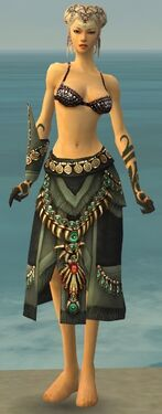 Ritualist Elite Luxon Armor F gray arms legs front
