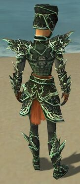 Warrior Elite Luxon Armor F dyed back