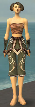 Monk Shing Jea Armor F gray arms legs front
