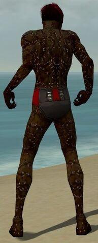 File:Necromancer Elite Scar Pattern Armor M dyed back.jpg