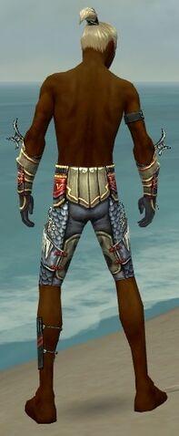 File:Assassin Monument Armor M gray arms legs back.jpg