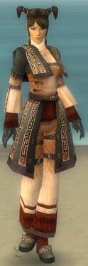 Monk Ancient Armor F gray front