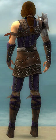 File:Ranger Studded Leather Armor M dyed back.jpg