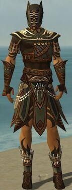 Ritualist Monument Armor M gray front
