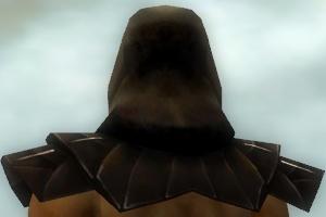 File:Dervish Primeval Armor M dyed head back.jpg