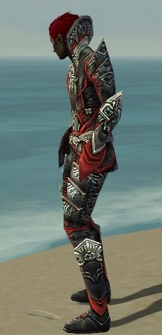 File:Necromancer Monument Armor M dyed side.jpg