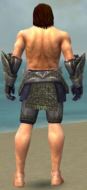 Warrior Platemail Armor M gray arms legs back