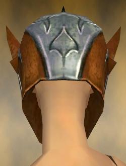 File:Warrior Elite Templar Armor F dyed head back.jpg