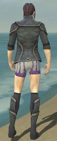 File:Elementalist Ascalon Armor M gray chest feet back.jpg