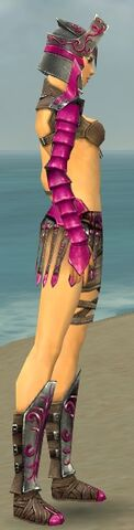 File:Warrior Elite Gladiator Armor F dyed side alternate.jpg