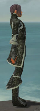Elementalist Elite Canthan Armor M gray side