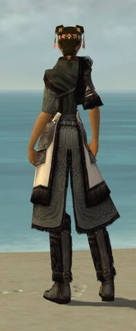 File:Ranger Norn Armor F gray chest feet back.jpg
