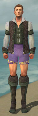 Mesmer Performer Armor M gray chest feet front